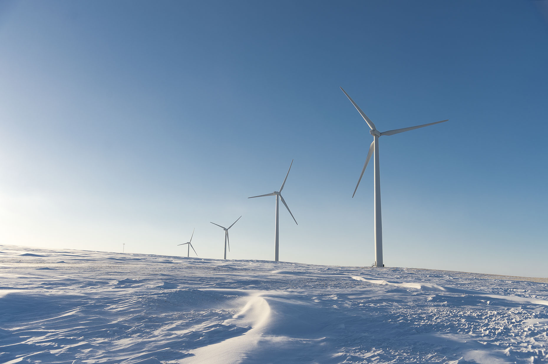 Minnesota Wind Farm Winter