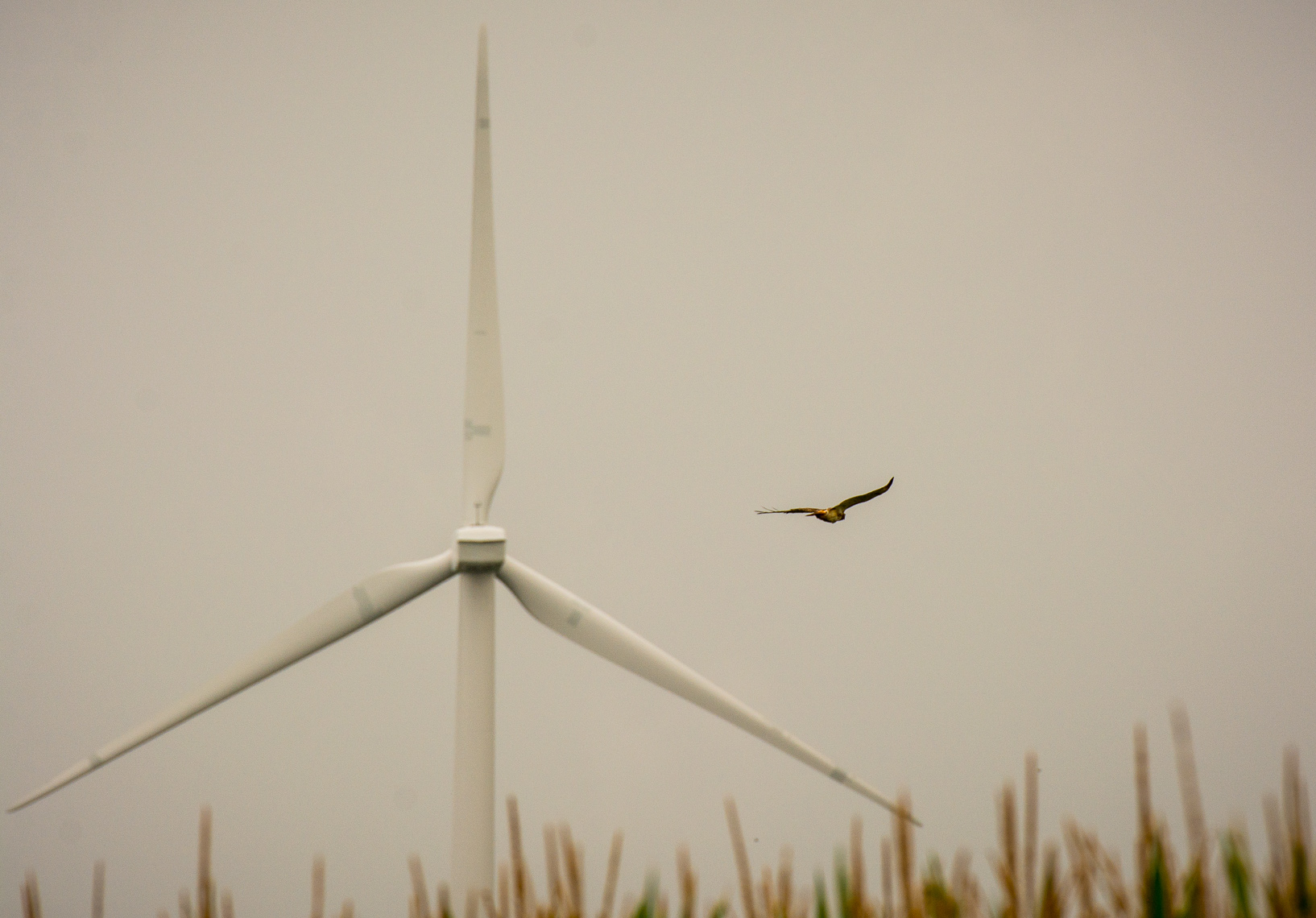 Renewable Energy Construction Photography | Wind Energy in the Midwest
